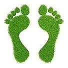 aaa green footprints